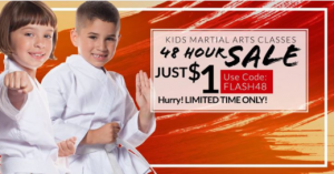 ultimate champions taekwondo deal code brooklyn