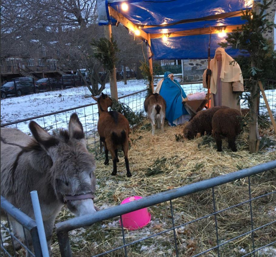 live nativity Brooklyn