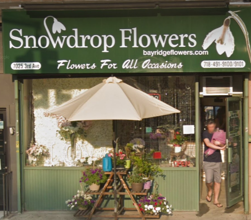Snowdrop Flowers Is Closing